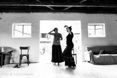 2013-III, Flamenco Camp; 7564