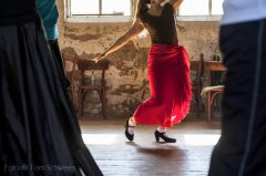 2014-II; Flamenco Camp; 2173